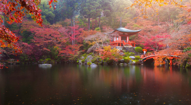 things to do and visit in japan