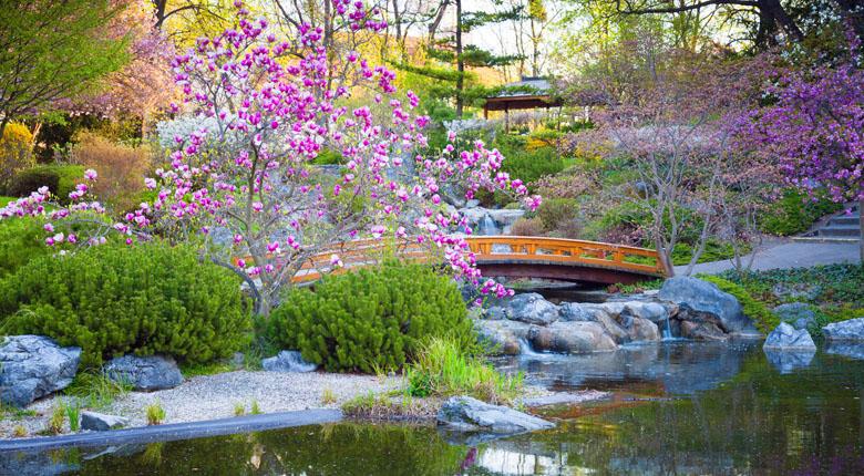 japanese-garden-visit
