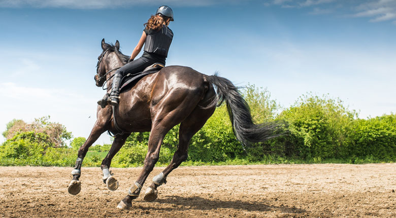 how to become a good horse rider
