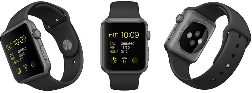 Apple Watch Sport 42mm Space Gray Case
