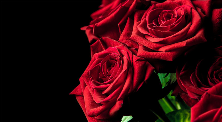 red roses bouqet