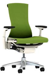 Herman Miller Embody Adjustable Chair