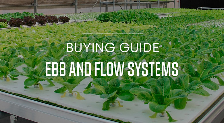Buying Guide Ebb and Flow Systems