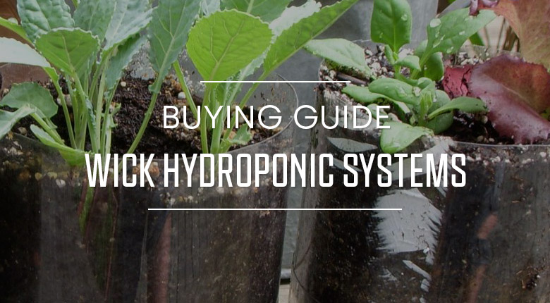 Buying Guide Wick Hydroponic Systems